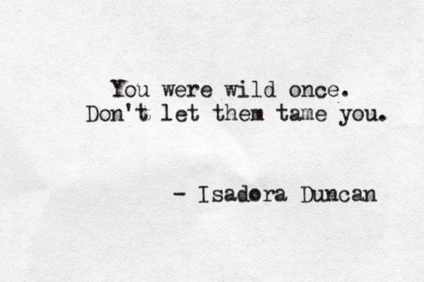 you were wild once. Don't let them tame you – B In Transition