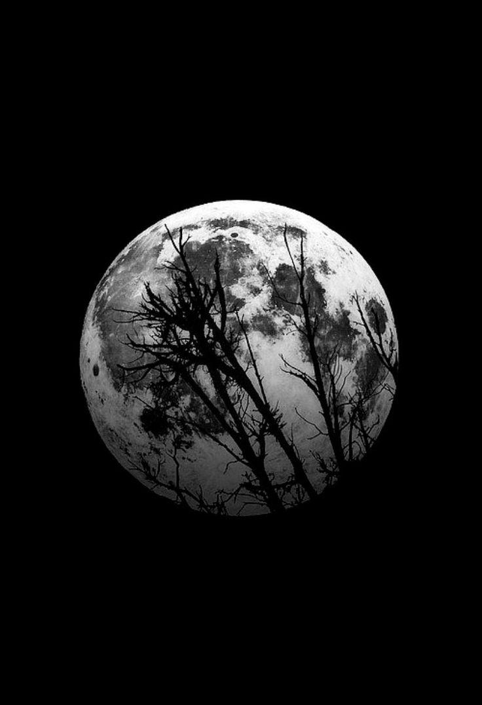 153 best Moon in b&w images on Pinterest   Black man ...