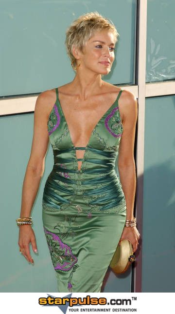 Sharon Stone Pictures Photos - Catwoman Los Angeles Premiere