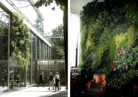Patrick Blanc, master of vertical gardening