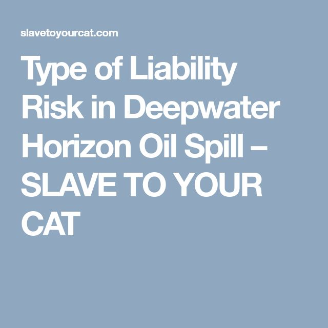 Type of Liability Risk in Deepwater Horizon Oil Spill – SLAVE TO YOUR CAT