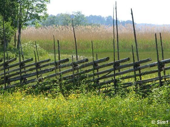 Traditional Swedish fence