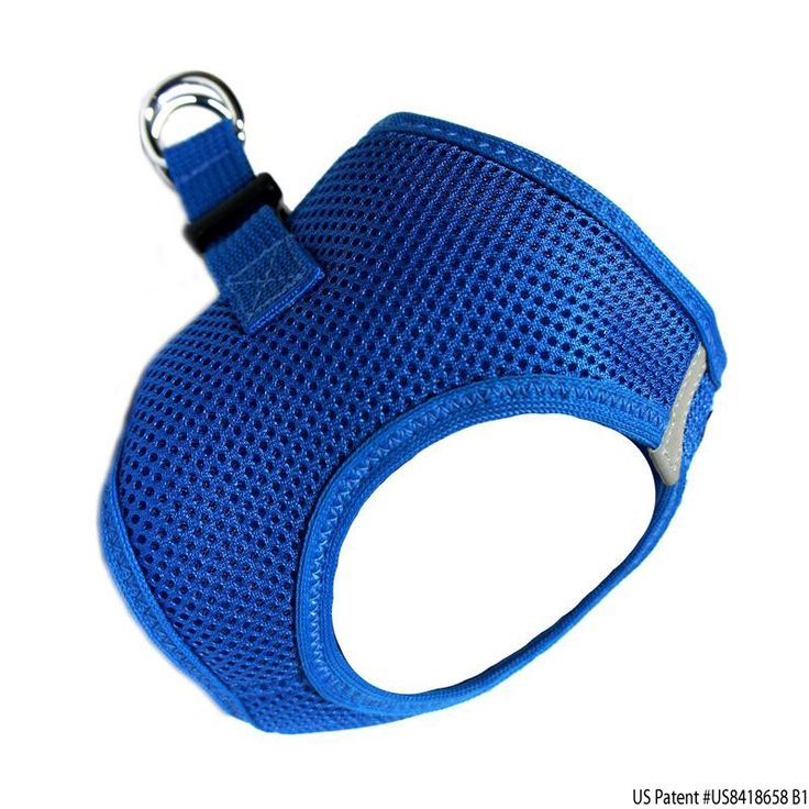 American River Ultra Choke Free Small Dog Harness in Royal Blue.  Trachea Safe design pulls only on the chest, which is important for dogs that tend to pull on the leash.