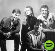 One of the most beloved British pop bands of the '80s and '90s, Prefab Sprout have had a minimum of chart success in the United States, where they're all but unknown outside of their devoted cult following, but singer/songwriter Paddy McAloon is regularly hailed as one of the great songwriters of his era.