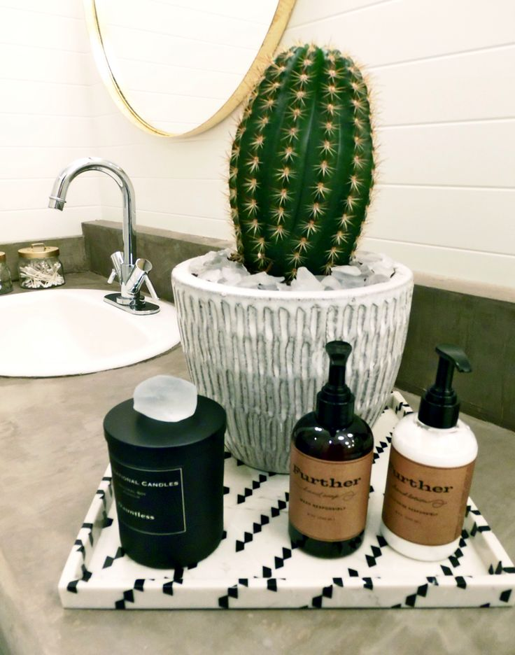 Holtwood Hipster | One Room Challenge | Further Products | Cactus | Concrete Countertop | Ardex Feather Finish | Nate Berkus Tray | Ikea Mirror DIY | V Groove Paneling