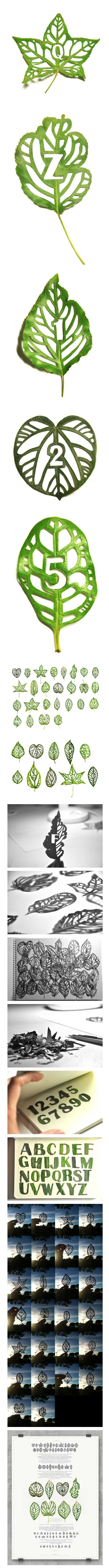 Made from Leaves typeface by Malaysian Graphic Designer Mei Linn  http://www.behance.net/gallery/Leaf-Type/5430287