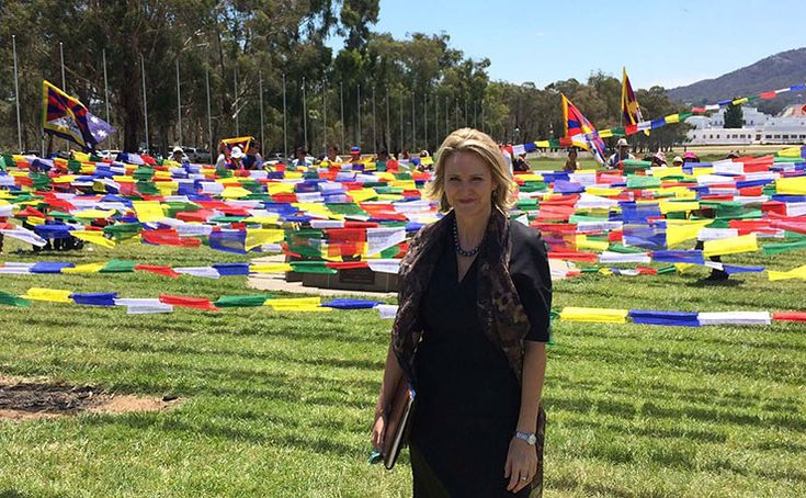 Labor's Conscientious Objector: Inside Melissa Parke's War On Indifference