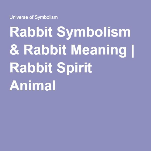 Rabbit Symbolism & Rabbit Meaning | Rabbit Spirit Animal