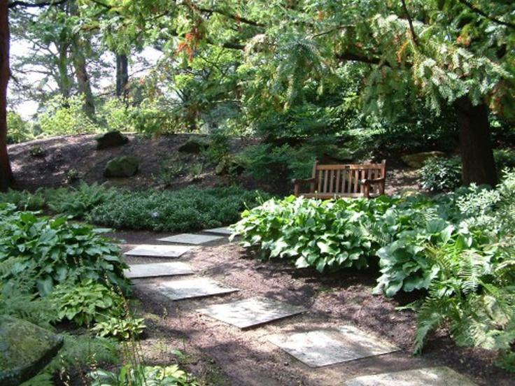 168 best Forest Garden Ideas images on Pinterest Garden ideas