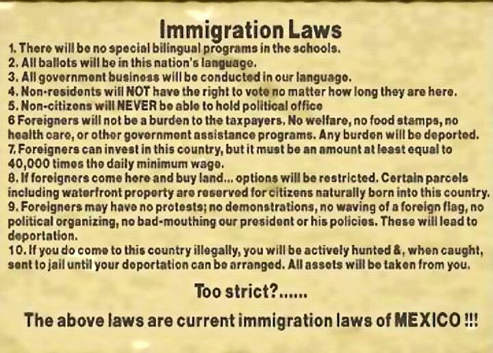 004 Immigration laws of Mexico Law, Argumentative essay
