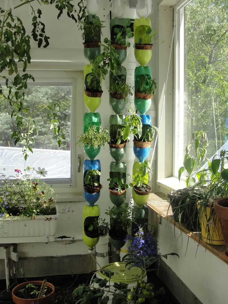 Colorful vertical garden made out of recycled soda bottles. Uses an automatic drip system (fish tank water pump). Or you can hand water the containers themselves. For more on how to make it, find us on facebook or get the newsletter...facebook.com/CeresGreenhouseSolutions