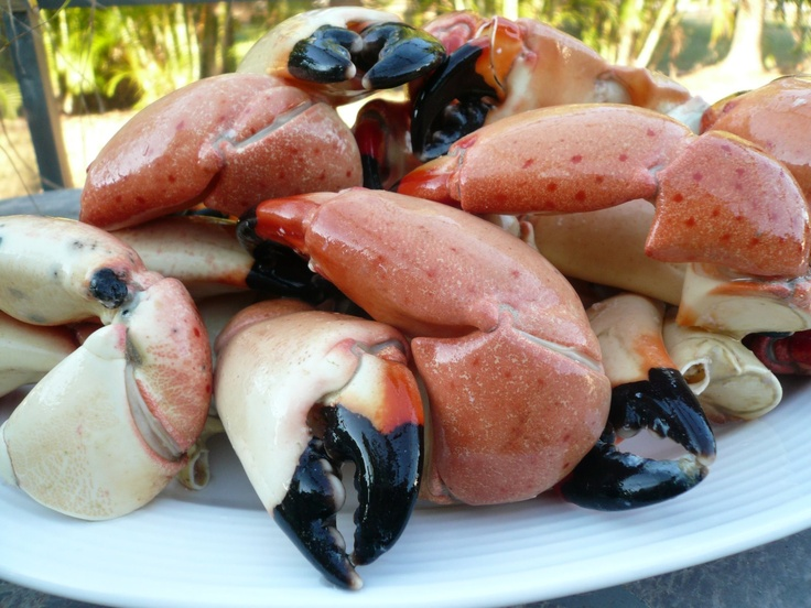 Stone Crab claw dinner