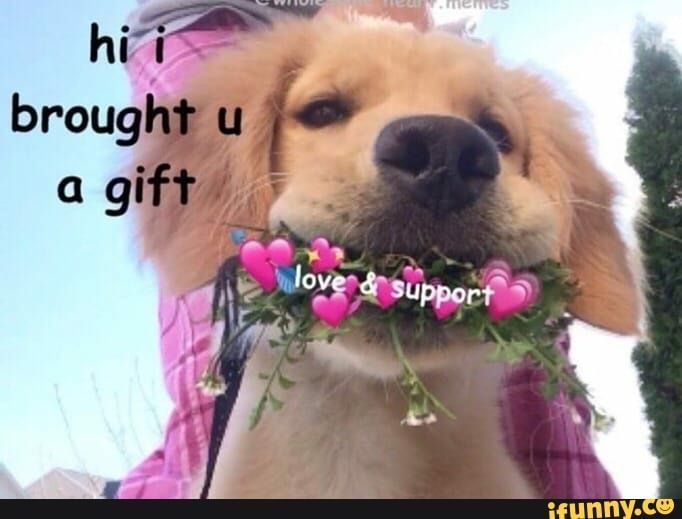Pin By Ashley On Wholesome Memes Cute Memes Cute Love Memes Memes