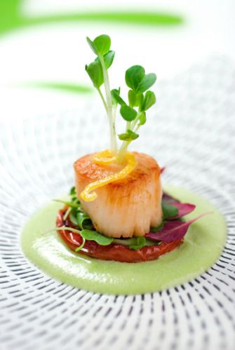 Best 25 food plating ideas on pinterest plating food for Gastronomia tecnoemocional