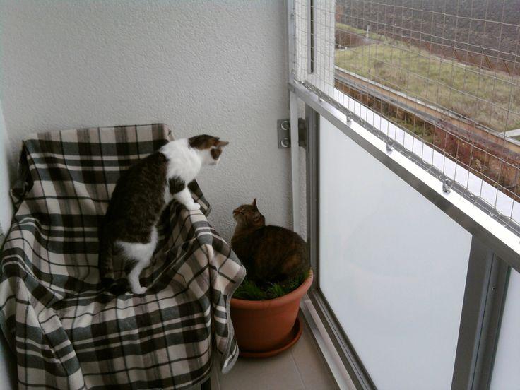 Myšáček a Mášenka