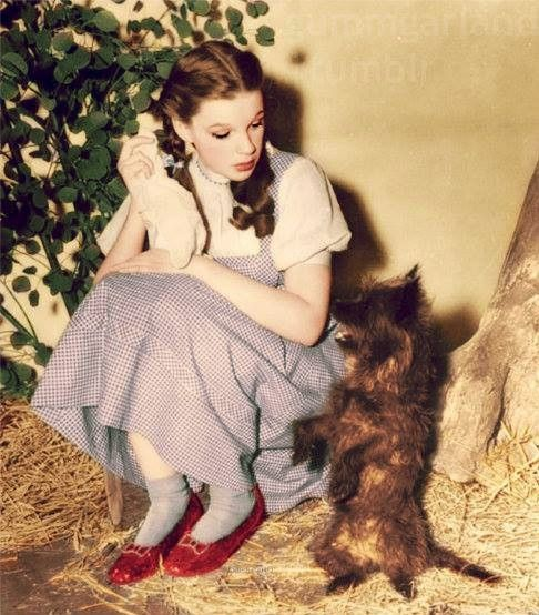 Set of Wizard Of Oz (1939) - Judy Garland and Toto. In color.