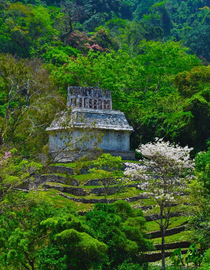 Palenque, Chiapas, Chiapas