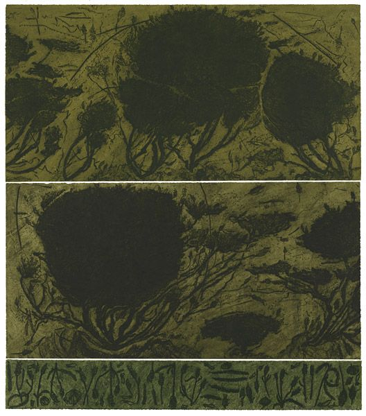 Hertha KLUGE-POTT Berlin, Germany born 1934 Australia from 1958 Lavender page 1998 ink; paper drypoint, printed in dark green ink with plate tone, from three zinc plates Impression: 4/4 Edition: edition of 4