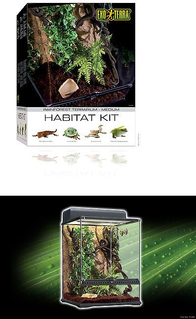 "Reptile Supplies 1285: Exo Terra Rainforest Habitat Kit 18"" X 18"" X 24"" Pt2662 BUY IT NOW ONLY: $141.0"