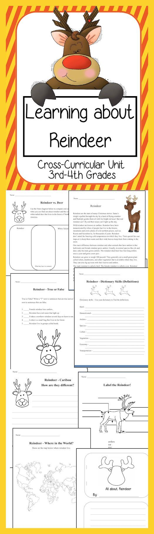 Learning about Reindeer: A Cross-Curricular Unit - Students will have fun learning all about reindeer when using this unit! Includes reading comprehension, student worksheets, venn diagrams where students can compare/contrast reindeer/white-tailed deer/caribou, write paragraphs using their research, write an acrostic poem, map work and more.  http://www.christianhomeschoolhub.com/pt/Christmas-Themed-Resources/wiki.htm