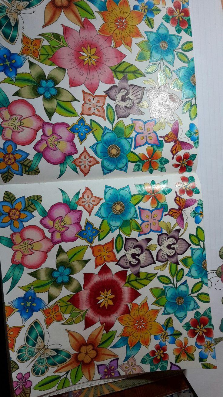 Art color book - Doodle Coloring Adult Coloring Coloring Books Colouring Pencil Art Color Combos Color Schemes Johanna Basford Secret Garden Colored Pencils