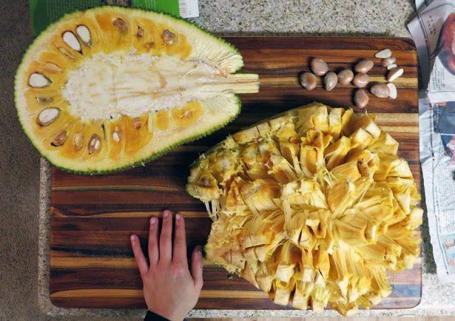 Jackfruit Recipes & How to Eat Jackfruit: paleo recipes, dessert recipes and more -THIS ONE HAS GOOD STEP BY STEP PHOTOS