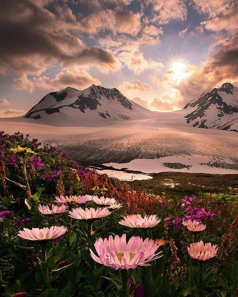 Alaskan Wilderness, need to go!