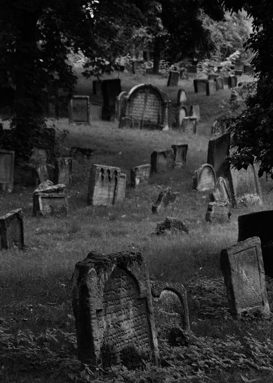 the graveyard symbolizes hamlets constant brooding about death and humanity comes to head in the graveyard scene.