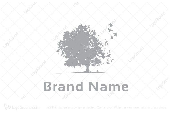 Logo for sale: Views Of Trees And Birds Logo