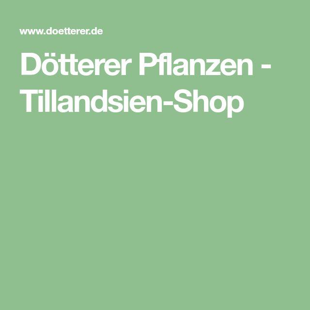 Garten shop  Pinterest'teki 25'den fazla en iyi Pflanzen shop fikri   Terrarium ...
