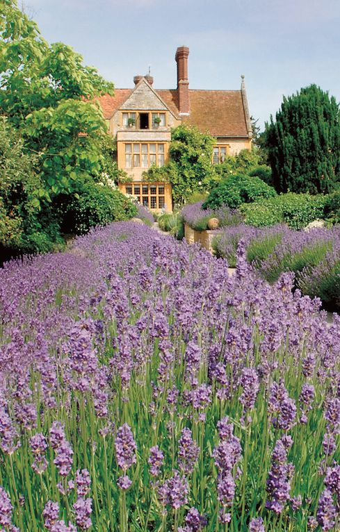 15th-century manor house nestled in the Oxfordshire countryside. #England Mmmmm, I can almost smell the lavender!
