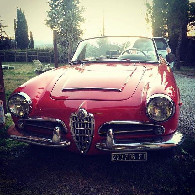 AlfaRomeo #Spider 1600