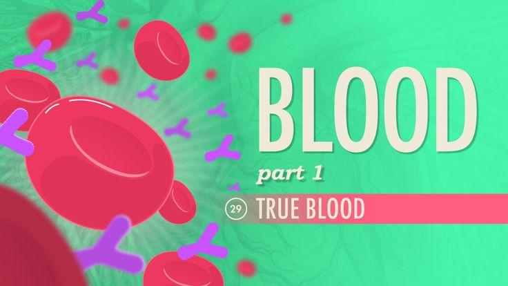 Blood, Part 1 - True Blood: A&P #29