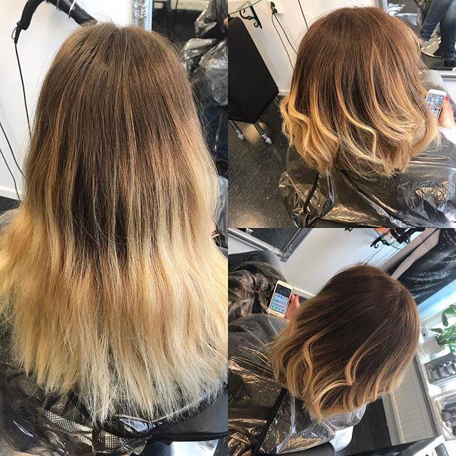 """""""En kund som vill ha lite större förändring, vilket alltid är roligt😍 klippte av en hel del och resultatet blev så fint! Ny fräsch färg i botten som jag drog ut och sedan ljust i längderna🌸och så Olaplex😍 /Linn  #sarashårslingalinn #olaplex #marianila #hairstyle #beforeandafter #brownhair #blondehair #haircut #haircolor #hairdresser #hair  #pictureoftheday #bestoftheday #photooftheday #september #beautiful #summertime"""" by @saras_harslinga_linn. #capture #pictures #pic #exposure #photos…"""