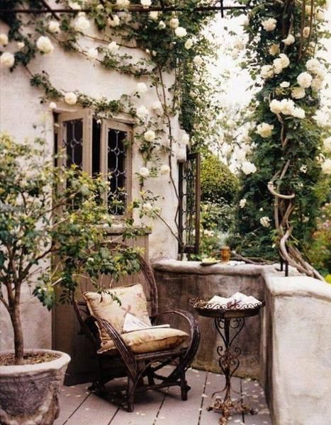 Shaded Patio Garden Ideas