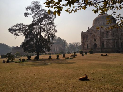 lodi_gardens5 another favorite is lodi gardens —  a 90 acre park designed around 15th and 16th century structures of the sayyid and lodi dynasties.