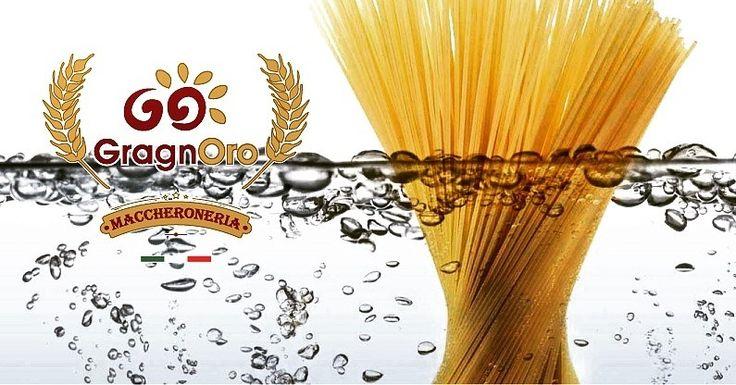 Gli Italiani hanno solo due cose per la testa: la seconda sono gli Spaghetti.  We❤ Pasta Gragnoro®  #pastagragnoro #welovepasta #madeinitaly🇮🇹 #spaghetti  #igers #igersnapoli #napoli #pasta #cottura #artigiani #amazing #cooking #foodporn #eating  Seguici anche su facebook: www.facebook.com/gragnoro