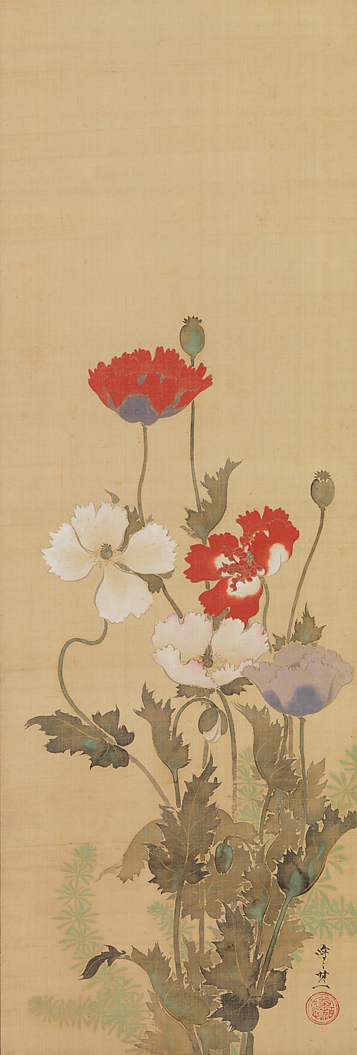 `Poppies` Suzuki Kiitsu (1796–1858) was a pupil of Sakai Hōitsu (1761-1828), the last of the three great masters of the Rimpa school, who revived the style in Edo (Tokyo). Earlier Rimpa painters had depicted plants in a boldly stylized manner, but by the nineteenth century, a greater degree of naturalism had crept into the actual drawing of the flowers. However, the design of the paintings is still quite flat and formalized and the end result is highly decorative.