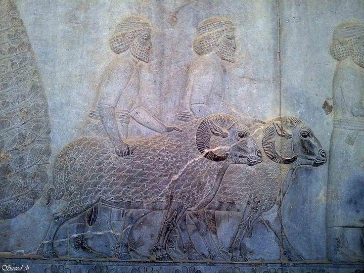 Basorelief din Palatul Apadana, Persepolis, Iran, datând din secolele VI-V î.e.n.