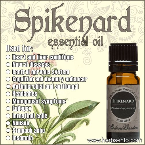 Uses And Benefits Of Spikenard Essential Oil (Full Guide) ►►…