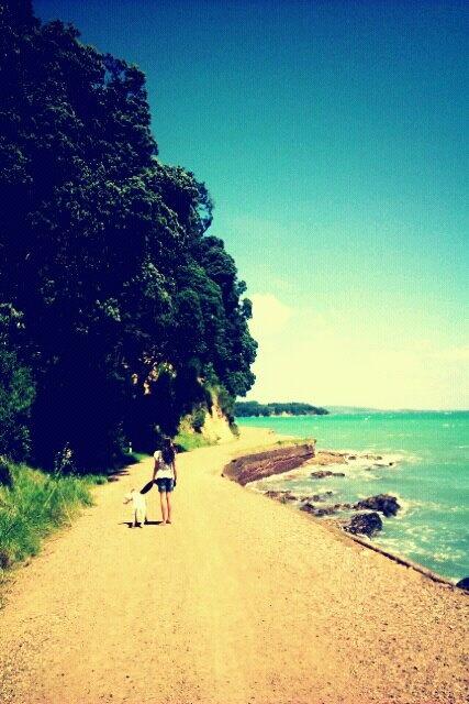 Waiheke Island.New Zealand