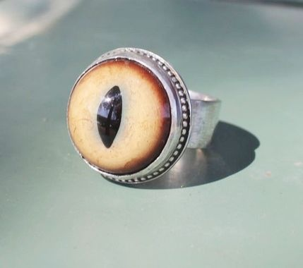 Trendy Jewelry Rings for Party,Prom, - Cougar Eye Ring: Eye Rings, Body, Cougar Rings, Trendy Jewelry, Cougar Eye, Rings Ii, Jewelry Rings, Jewelry Boxx, Eyes