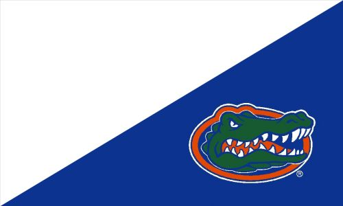 College House Divided Flag at College Flags and Banners Co. your Custom College Flag source