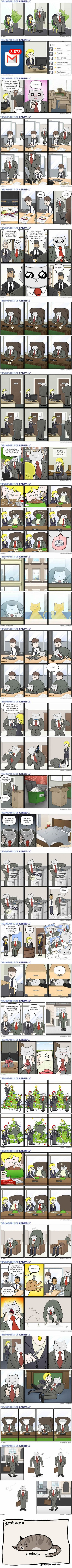 27 comics showing this is how your office would look if your boss was a cat