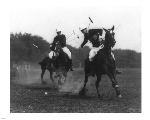 26 best Horse Power | Pferde Stärken images on Pinterest ...
