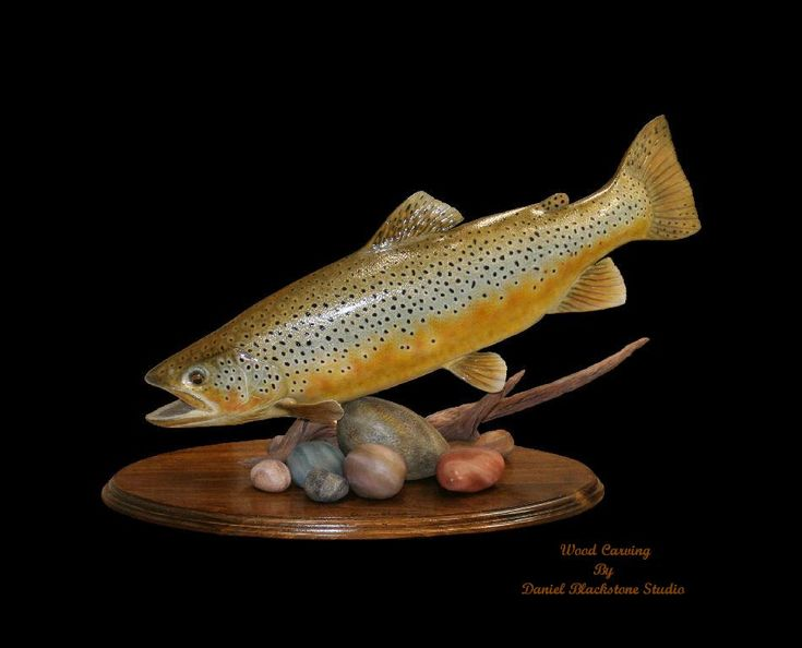 Daniel blackstone hand carved brown trout fish carving