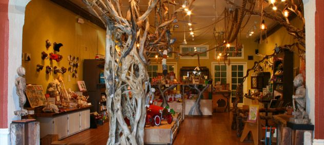 Curiosities For Kids - Paxton Gate Toy Store, San Francisco