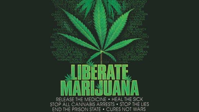 Should Marijuana be Legalized: Essay