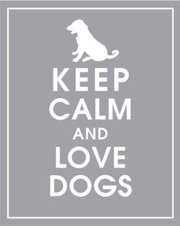 .Dogs Quotes, Life Motto, Puppies Stuff, Dogs Signs, So True, Keep Calm, Puppies Baby, True Stories, Animal
