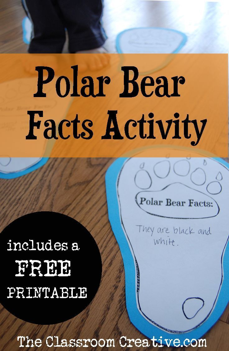 Gather your polar bear facts with this activity! #winter #polarbear
